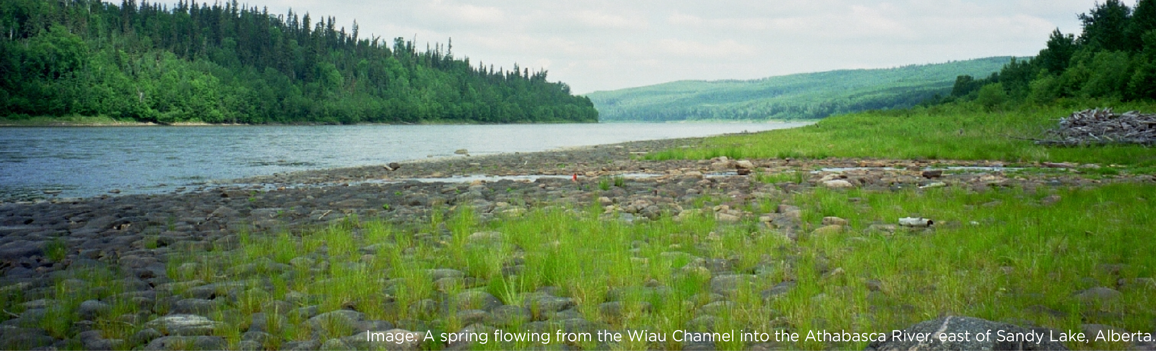 Spring from Wiau Channel flowing into Athabasca River, Alberta.